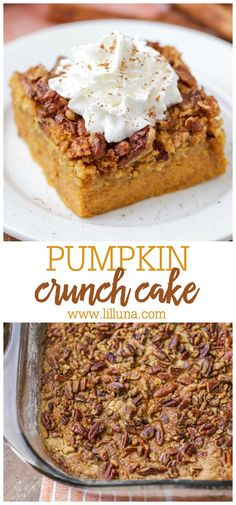 fall season Pumpkin crunch cake is a must-make during the fall season. It entails all of the smooth pumpkin flavors, topped with crunchy pecans and a dollop of whipped cream. Oreo Dessert, Pumpkin Dessert, Mini Desserts, Holiday Desserts, Fall Dessert Recipes, Pumpkin Crunch Cake, Pumpkin Spice, Pumpkin Cakes, Pumpkin Pumpkin