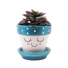 Add a cute touch to your home or office with this unique handpainted terracotta pot with cute face and metallic pink cheeks by Timberline Studio. Perfect for small indoor plants such as air plants, succulents, or cacti (or a faux one, if you prefer). Looks beautiful in a sunny window.  #succulents #plants #planters #cute #planter #blue #turquoise #handmade #etsy #terracotta #decor