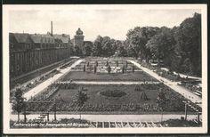 Aschersleben, Rosengarten G.-A.-Bürgerstrasse (Postkarte)