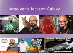 Ver a Jackson Galaxy, see Jackson Galaxy. Porque sabe de gatos, no como otros que no saben tanto y termina mejorando la vida de los gatos y de los seres humanos. Está bueno ver el programa para aprender más sobre los seres humanos, no sólo sobre los gatos.