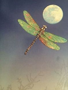 ❣Julianne McPeters❣ no pin limits Dragonfly Art, Dragonfly Tattoo, Dragonfly Symbolism, Dragonfly Quotes, Moon Art, Stars And Moon, Spirit Animal, Hummingbird, Illustration