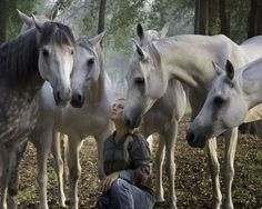 sylvia zerbini and her spellbinding arabians from cavalia. she performs with nine horses at liberty at one time!