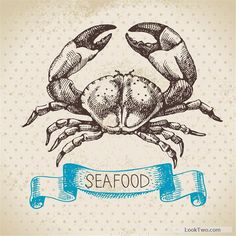 Hand drawn seafood with ribbon vectors 05 free vector download