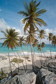 Barbados in the Caribbean