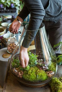 Indoor gardens are a big home trend this year. We love the look of a terrarium on the windowsill.
