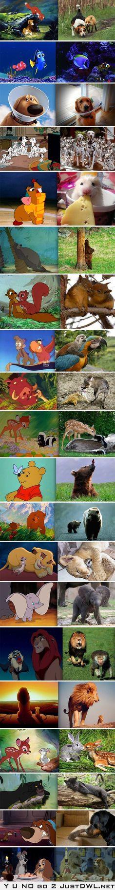 Personajes de la fantasía Disney encontrados en la vida real