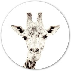 Magnetic wall sticker giraffe by Groovy Magnets