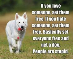 Seriously... Set them free. Most of them are f_ing idiots.