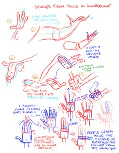 Hand construction notes ✤ || CHARACTER DESIGN REFERENCES | Find more at https://www.facebook.com/CharacterDesignReferences if you're looking for: #line #art #character #design #model #sheet #illustration #expressions #best #concept #animation #drawing #archive #library #reference #anatomy #traditional #draw #development #artist #pose #settei #gestures #how #to #tutorial #conceptart #modelsheet #cartoon #hand