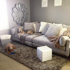 Z Gallerie Ventura 2 PC Extra Deep Sofa. I want the dogs and the sofa please