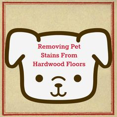 Removing pet stains from hardwood floors: cleaning hardwood floors with pets and getting out pee stains from dogs and cats. Deep Cleaning Tips, House Cleaning Tips, Cleaning Hacks, Cleaning Recipes, Rug Cleaning, Cleaning Products, Hardwood Floor Cleaner, Clean Hardwood Floors, All You Need Is