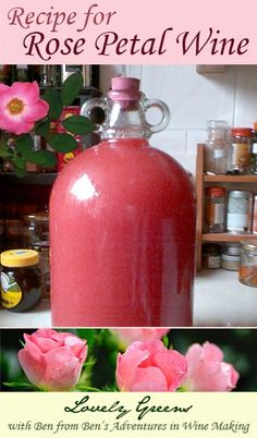 Rose Petal Wine Recipe. Wish I had enough roses to try this. It's so Victorian.