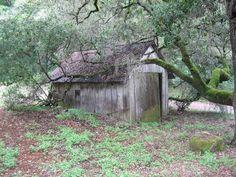I love decrepit old shacks