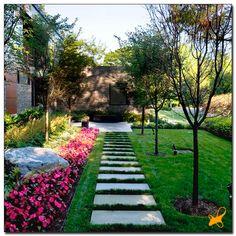 Jardim, caminho...