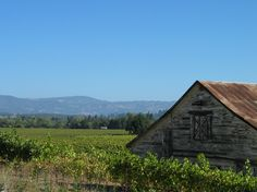 Healdsburg,Ca.   I photographed this barn!!! Loved it!