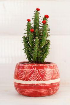 Botany, Planter Pots, Plant Pots