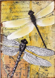 Dragonflies - an original collaged and mixed media ACEO. 2 1/2 x 3 1/2 in size. Will be shipped in a protective plastic sleeve.