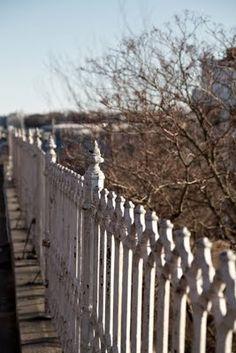 Beautiful fence !