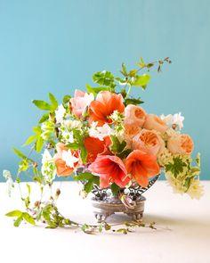 Winter Styling: Antique Fruit Bowl | Tulipina