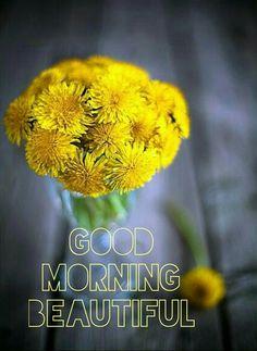 Good morning Monday Morning, Good Morning, Night, Beautiful, Buen Dia, Bonjour, Good Morning Wishes