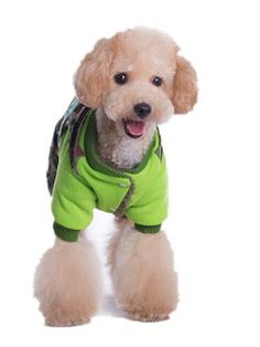 Dofull autumn winter camouflage pet cotton jumpsuit Dog clothes greenno.YFH06 *** Discover this special dog product, click the image : Dog Cold Weather Coats