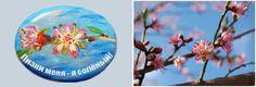 Цветы персика (камень акриловые краски)