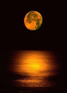 Moon~Lovely golden-orange glow