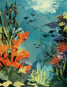 Underwater Art Print by Robin Birrell Underwater Drawing, Ocean Drawing, Ocean Underwater, Arte Coral, Coral Reef Art, Coral Reefs, Art And Illustration, Illustrations Vintage, Coral Painting