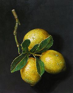 Lemons on slate by Paul Herman