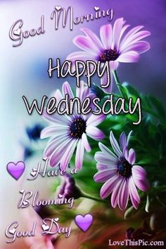 Image result for good morning beautiful flowers