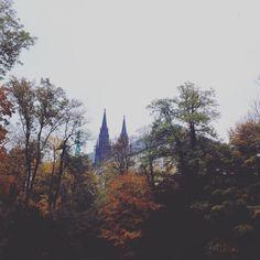 #nature #autumn #prague Nemocná procházka Jelením příkopem.Je mi unaveně a Jenda…