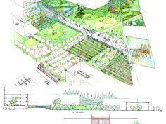 Food for Thought | UBC School of Architecture and Landscape Architecture