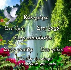 Good Night, Good Morning, Herbs, Pictures, Mondays, Greece, Drink, Coffee, Quotes