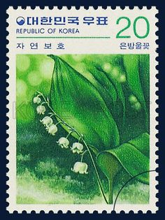 Postage Stamps of Nature Conservation Series,  a lily of the valley,  Flower, green, white, 1979 06 20, 자연보호 시리즈(제3집), 1979년 06월 20일, 1140, 은방울꽃, postage 우표