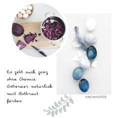 Werbung | Gastbeitrag Ostereier mit Rotkraut natürlich färben?! Das geht kinderleicht und zaubert euch wunderschöne Blautöne ins Osternest. #hoferat #dabinichmirsicher #meinhofer #sinnenrauschDIY #ostereier #eierfärben #rotkraut #diy #osterdeko Coloring Easter Eggs, Diy Blog, Cool Diy Projects, Bracelet Watch, Diy And Crafts, Crafty, Creative, Bones, German