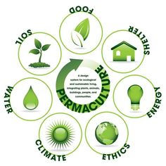 is Permaculture? Plus 12 More of Your Permaculture Questions Answered What is Permaculture? Plus 12 More of Your Permaculture Questions AnsweredWhat is Permaculture? Plus 12 More of Your Permaculture Questions Answered Permaculture Design Course, Carbon Sequestration, Ecology Design, Natural Ecosystem, Aquaponics System, Hydroponic Systems, Environmental Design, Environmental Architecture, Environmental Issues