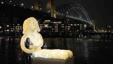 """Dolly"" by crochet-artist Tina Fox, as part of Sydney's ""Vivid Light Walk"" #crochet #art"