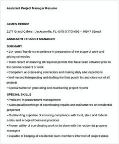 Professional Entry Level Project Management Resume  Entry Level