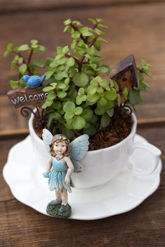 If you are looking for Summer Garden Teacup Fairy Garden Ideas, You come to the right place. Below are the Summer Garden Teacup Fairy Garden Id. Fairy Crafts, Garden Crafts, Garden Ideas, Suculentas Diy, Diy Jardin, Teacup Crafts, Large Flower Pots, Halloween Fairy, Haunted Halloween