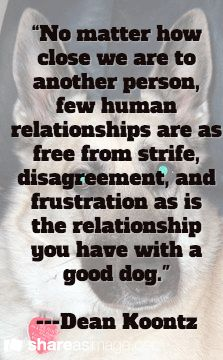 """No matter how close we are to another person, few human relationships are as free from strife, disagreement, and frustration as is the relationship you have with a good dog.""  ---Dean Koontz"