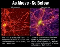 Brain cell v Universe. Could our universe be the brain cell of a larger being? Pseudo Science, Science And Nature, Spirit Science, Science Geek, Science Facts, Science Fun, Science Lessons, Life Science, Science Experiments