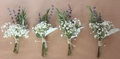 Gypsophila, Lavender, Rosemary and Senecio buttonholes, tied with lace and brown twine.
