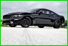 2015 Ford Mustang Shelby GT350 / Black Shadow + Stripeless / Financing!