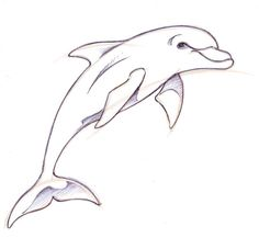 pictures to draw | How To Draw A Dolphin | Drawing! | Pinterest ...