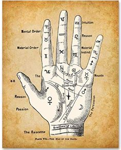 Palm Reading Divination Chart - Unframed Art Print - Great Gift for Fans of the Occult, Supernatural and Astrology. Palm Reading, Wall Art Prints, Canvas Prints, Pagan Art, Map Canvas, Palmistry, Star Art, Book Of Shadows, Love And Marriage
