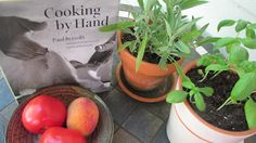The Key to the Gate: A Cookbook Staycation