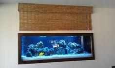 125 Gallon In Wall Saltwater Reef Aquarium by Sunset Aquatics