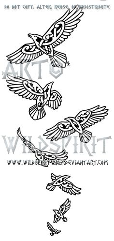 This is 's completed commission of seven knotwork ravens in descending sizes. I do apologize for the obnoxious watermarks but they have been put in plac. Seven Knotwork Ravens Design Celtic Raven, Celtic Tribal, Celtic Art, Norse Tattoo, Viking Tattoos, Wiccan Tattoos, Inca Tattoo, Symbol Tattoos, Celtic Patterns