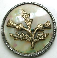 Antique Steel Cup Button Brass Thistle Flowers over Iridescent Shell- 1 & 3/""