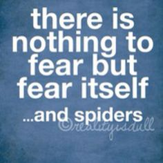 nothing to fear but fear and spiders